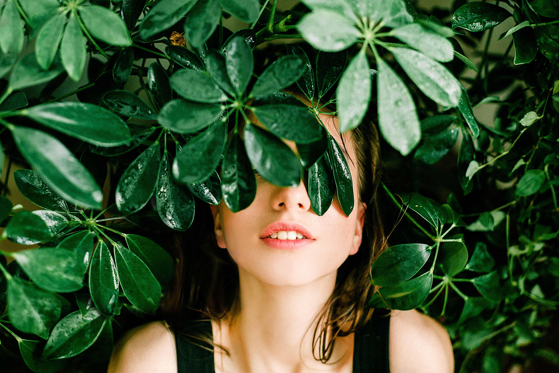 10 ervas que atraem energias positivas 2